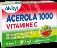 Govital Acerola 1000 à Eysines