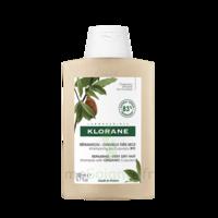 Klorane Beurre Cupuaçu Bio Shampoing Cheveux Très Secs 200ml à Eysines