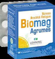 Lehning Biomag Comprimés à Croquer Agrumes B/90 à Eysines