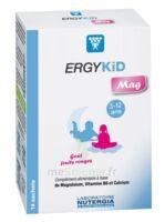 Ergykid Mag Poudre Solution Buvable 14 Sachets à Eysines