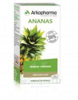 Arkogélules Ananas Gélules Fl/150 à Eysines