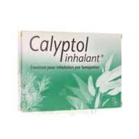 CALYPTOL INHALANT, émulsion pour inhalation par fumigation à Eysines