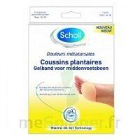 Scholl Coussin plantaire douleurs métatarsales T2 à Eysines