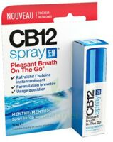 Cb 12 Spray Haleine Fraîche 15ml à Eysines