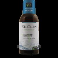 Santé Verte Silicium Solution buvable Fl/500ml à Eysines