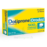 Dolipraneorodoz 500 Mg, Comprimé Orodispersible à Eysines