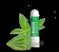 PURESSENTIEL RESPIRATOIRE Inhalation nasal 19 huiles essentielles à Eysines