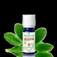 Puressentiel Huiles essentielles - HEBBD Ravintsara BIO* - 5 ml à Eysines