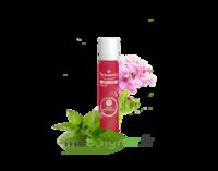 PURESSENTIEL ANTI-PIQUE Roller 11 huiles essentielles à Eysines