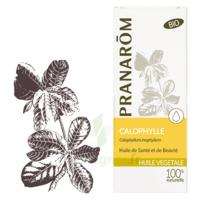 Pranarom Huile Végétale Bio Calophylle 50ml à Eysines