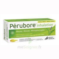 Perubore Caps Inhalation Par Vapeur Inhalation Plq/15 à Eysines
