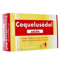 COQUELUSEDAL ADULTES, suppositoire à Eysines