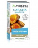 Arkogelules Curcuma Pipérine Gélules Fl/45 à Eysines