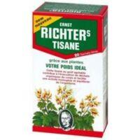 Ernst Richter's Tisane poids idéal 20 Sachets à Eysines