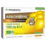 Arkoroyal Gelée Royale Bio 1500 Mg Solution Buvable 20 Ampoules/10ml à Eysines