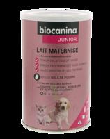 Biocanina Lait poudre maternisé B/400g à Eysines