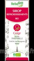 Herbalgem Sirop Bio Refroidissement 150ml à Eysines