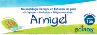 Boiron Arnigel Gel T/120g à Eysines
