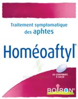 Boiron Homéoaftyl Comprimés à Eysines