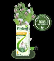 Phytoxil Toux Sans Sucre Sirop Adulte Enfant +2 Ans Fl/120ml à Eysines