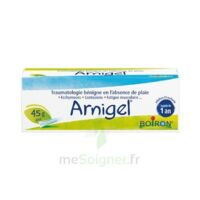 Boiron Arnigel Gel T(alumino-plastique)/45g à Eysines