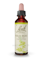 Fleurs De Bach® Original Wild Rose - 20 Ml à Eysines