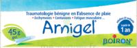 Boiron Arnigel Gel T/45g à Eysines