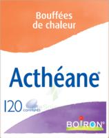 Boiron Acthéane Comprimés B/120 à Eysines